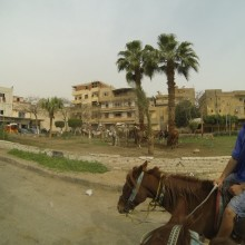 Egypt058