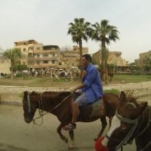 Egypt059