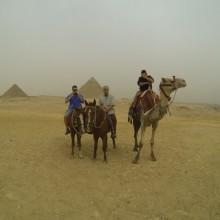 Egypt082