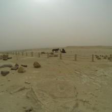 Egypt105