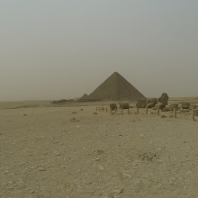 Egypt106